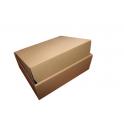 Karton fasonowy 250x200x50mm